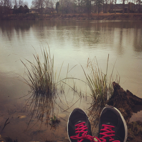 Adventure run along Black Warrior River - Tuscaloosa, AL