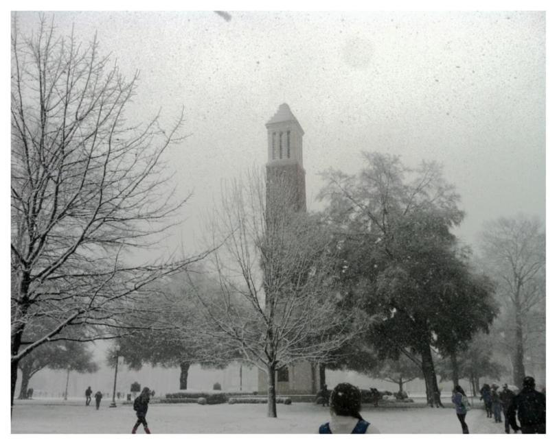 Snow in Tuscaloosa