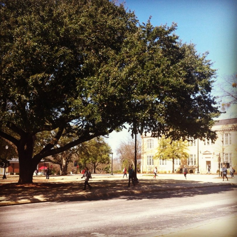The University of Alabama's campus is just so photogenic, I can't help it.
