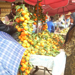 oranges in meknes