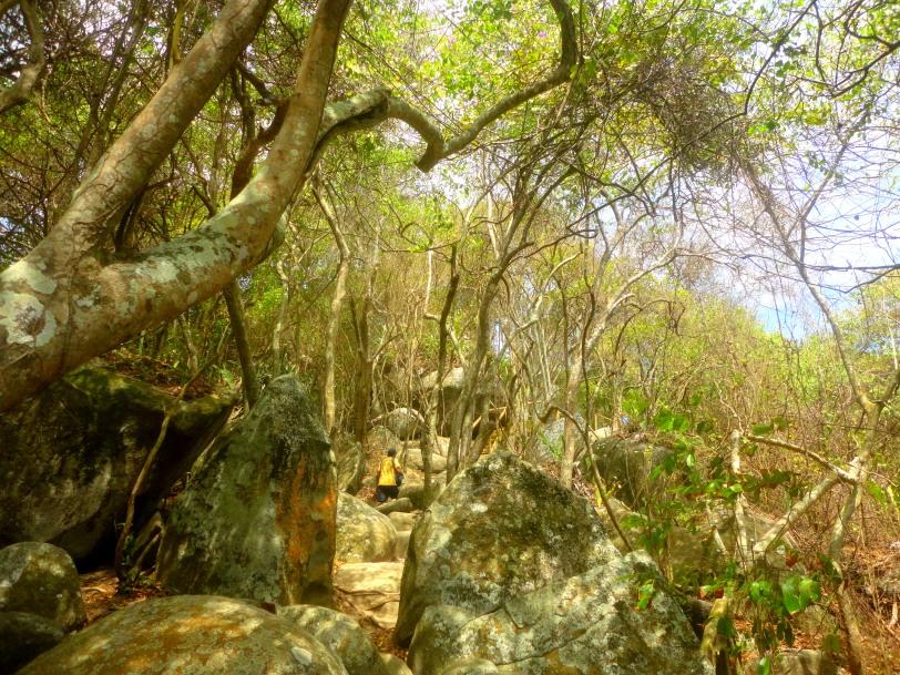 Tayrona hiking