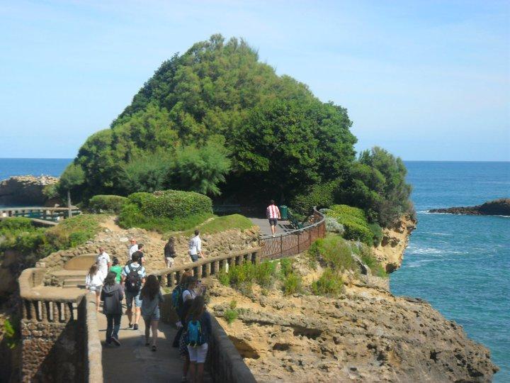 biarritz forest walkway